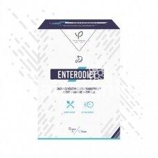 """Enterodiet (naujas Effidiet pavadinimas) 12 pakelių """"YVES PONROY"""""""